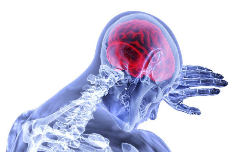 Grafische Darstellung Kopf und Hirn